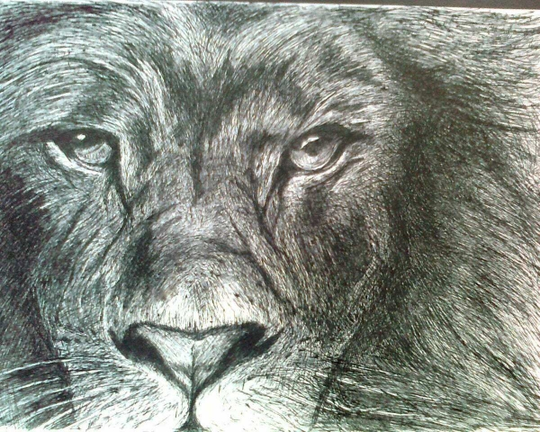 The Jungle Book par molnarepiteszet